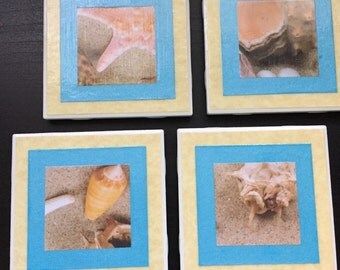 Sandy Seashells