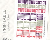 PayDay stickers pink,purple,silver ,printable Pay Day stickers for Erin Condren Planner,Plum Paper,school planner, family calendar (39)