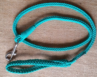 Bright Blue Leash