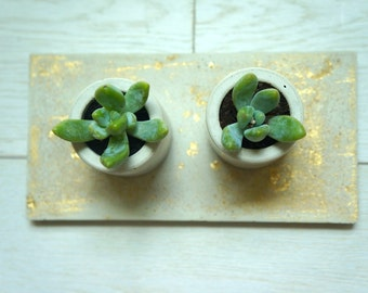 Concrete and Gold Mini Planters Set. Includes 2 Planters and a Tray