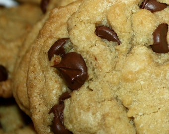 Delicious 'Homemade' Chocolate Chip Cookies~ 2 Bakers Dozen!!