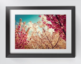 Sakura Cherry Blossom Photography for Home Decorations, Nature Photography, Wall Art