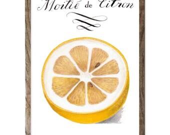 Lemon botanic style fruit print with French writing. 8 x10 Kitchen art. French calligraphy. Hand painted lemon half