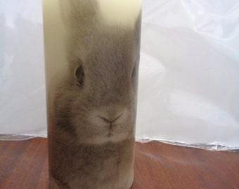 rabbit candle