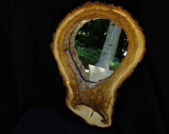 Hollow Log Art Mirror