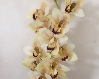 "Cream Faux Cymbidium Orchid Artificial Flowers - 40"" Tall"