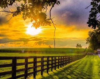 Country Sunrise, Farm, Fence, Rural, Shadow, Plank Fence, Horse Farm, Kentucky, Fine Art Print, Photography, Art Print