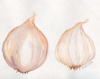 Garlic Watercolors Paintings Original, Small Vegetable Garlic Painting, Kitchen Food Wall Art,  kitchen decor, garlic illustration