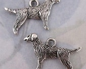 4 pcs. casted pewter silver setter retriever dog charms 24x16mm #f4127