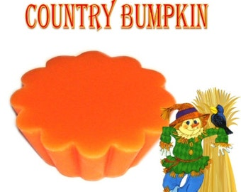 4 Country Bumpkin Wax Tarts Candle Melts Fall Spicy Fruit and Pumpkin Scent