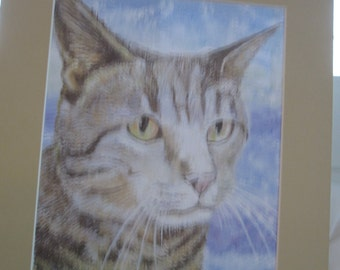 Matted Print of Kitty Portrail