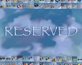 Reserved for MyBag