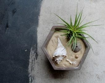 Hexagon Vintage Bonsai Planter, Zen Garden, Geometric, Made in Japan, Dark Brown, 9 Inches Across