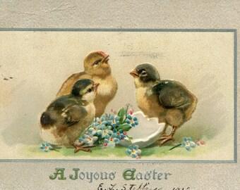 Easter vintage postcard, Easter chicks around shell, flowers, Tuck & Sons No. 708 vintage postcard, SharonFosterVintage
