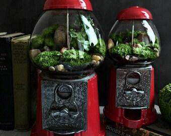 Terrarium / Carousel Gumball Machine Upcycled Recycled
