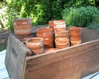 Lof of FIVE PETITE Vintage Nursery Pots