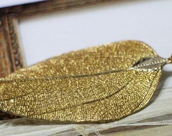 beatiful golden leaf