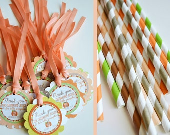 Pumpkin Baby Shower Decorations Package Fully Assembled