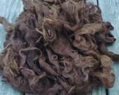 Long Suri Alpaca Fiber, 5-8 Inches, Medium Brown, 2 Ounces, Hershey