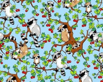 Krazy Kritters   Cotton Fabric   Blue Raccoons 112-29751  Fabriquilt