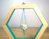 Turquoise Hexagon Hanging Planter