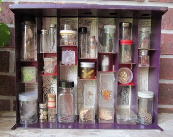Apothecary VI Mixed Media Shadowbox Assemblage