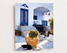 Greece Photography - Santorini Photograph - Black Cat Print Blue White Decor Greek Wall Art Travel Photo Rustic Mediterranean Decor