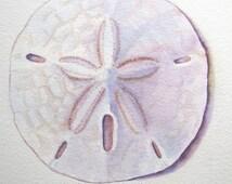 Seashell Print, Sand Dollar Painting, Sand Dollar Print, Sand Dollar Wall Art, Sand Dollar Watercolor, Beach Home Decor, Sea Shell Art Gift