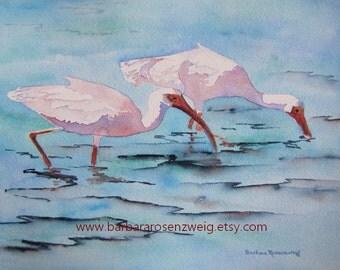 Coastal Decor Beach, Coastal Wall Art, Coastal Print, IBIS PRINT, ibis bird print art, bird painting, bird lover gift, white shore bird art