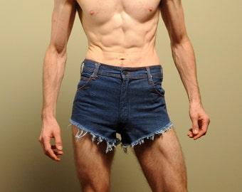 vintage 70s Faded Glory jean shorts cutoff shorts dark wash denim Daisy Dukes Jet zipper 1970s cut off 28 waist small XS