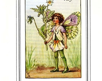 The HEART'S EASE FAIRY Vintage Book Plate c 1940 Original Book Page Book of the Flower Fairies Cicely M Barker