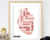 Anatomical Heart Typography Art Decor Print
