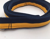 Blue and Gold Dog Leash - ribbon on both sides