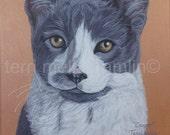 Cat Portrait, 8x10 Pet Portrait, Custom Pet Portrait, Painted Pet Portraits, Cat Portrait Custom, Acrylic Painted Portrait