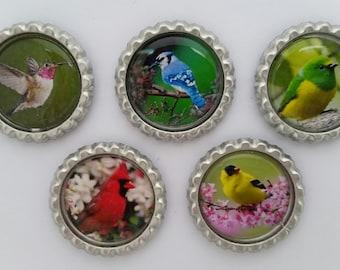 Birds Bottle cap magnets