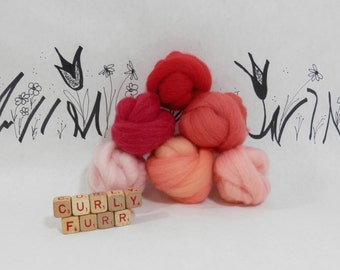 Wooly Buns roving, fiber sampler, assortment, needle felting supplies in Coral Reef, 1.5 oz 6 piece roving collection, orange ombre shade