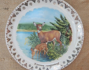 WIsconsin State Souvenir Plate  ~  Wisconsin Vacationland Souvenir Plate  ~  Deer and Fawn Wisconsin Souvenir Plate