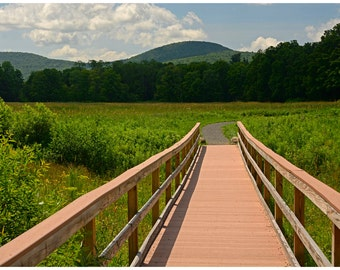 Walkway to a Mountain Color Landscape Photograph Print