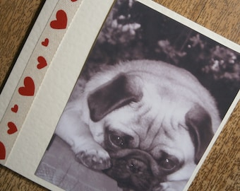 Pug Love card for any occasion
