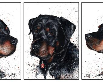 Set of 3: 5x7 Original Custom Watercolour Pet Portraits