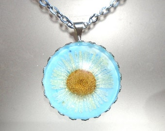 Real White Daisy Pressed Flower Round Silver Plated  Penant Pale blue Necklace