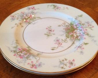 "Theodore Haviland New York ""Apple Blossom"" Set of Two Salad Plates"