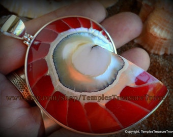 Natural Nautilus shell slice/ 925 Bali silver with bright red resin back fill focal bead pendant Sacred Geometry (item NSR-1RA)
