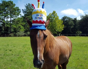 Birthday Hat for Horse or Pony with Candles -- Soft Equine Birthday Hat - Fun Horse Costume