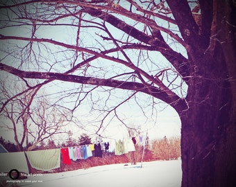 Fine Art Photograph - winter photography - portrait print - wall art - Art Print - home decor - quaint - laundry line - atlantic canada