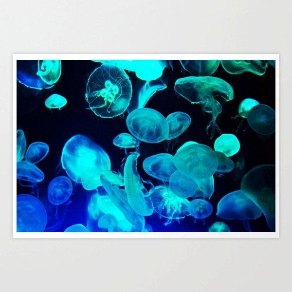 Nice Bedroom Chairs Blue Accent Wall Bedroom Bedroom Furniture King Size Childrens Bedroom Art: Blue Moon Jellyfish Photograph Print Black Ocean Nautical