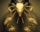 The Gate Keeper - Original Sculpture Made Of Real Animal Bones by Forgotten Boneyard artist Tim Prince
