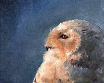 SNOWY OWL PAINTING - original oil painting, white owl art, snow owl, bathroom art, animal oil painting, wildlife painting, owl home decor