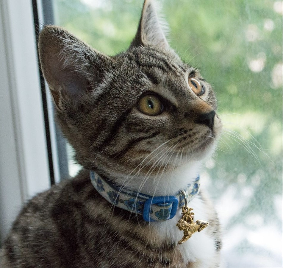 Cat Collar Bastet Egyptian Fan Blue With Gold By