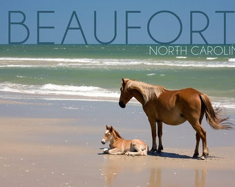 Beaufort, North Carolina - Banker Pony and Foal (Art Prints available in multiple sizes)